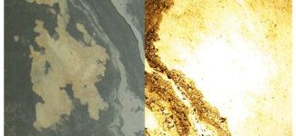 Прозрачный каменный шпон Leaf Stone Rustique