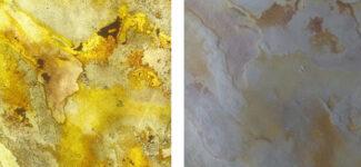 Прозрачный каменный шпон Leaf Stone Blanco