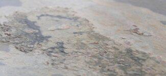 Каменный шпон Leaf Stone Классический Rustique
